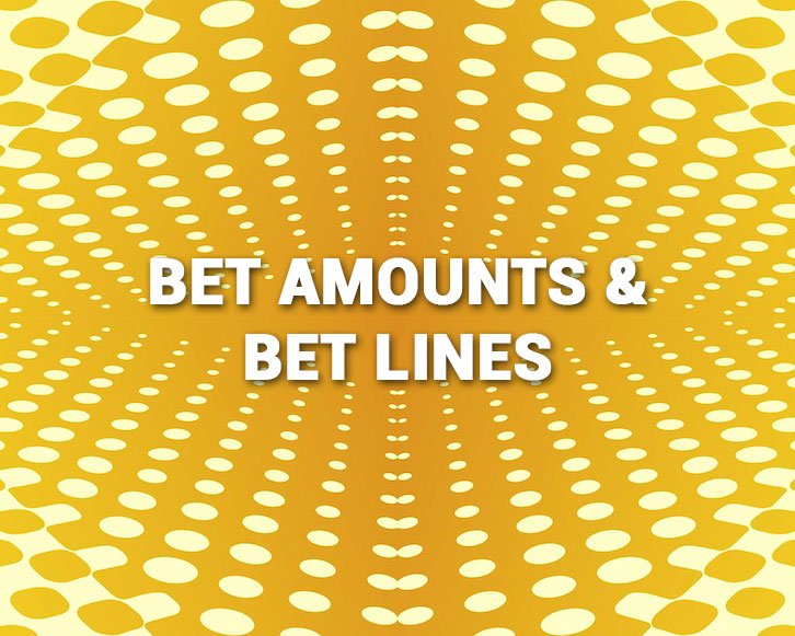 Bet Amounts and Bet Lines on slots